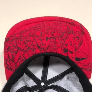 DC Comics Accessories - Dc comics flash hat snap back